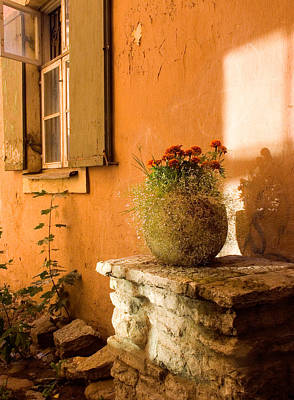 Photograph - Morning Light Tuscany by Cliff Wassmann