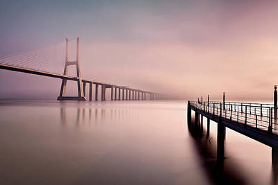 Photograph - Morning Low Fog by Jorge Maia
