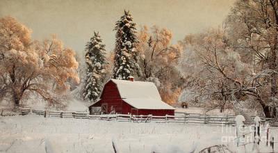 Morning Magic II Art Print by Beve Brown-Clark Photography