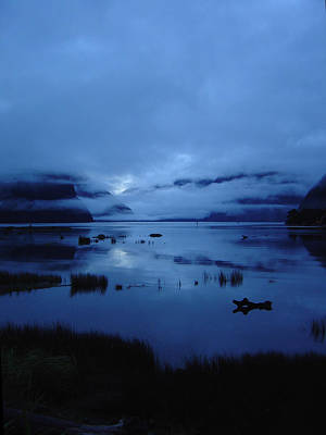 Photograph - Morning Milford Sound by Werner Hammerstingl