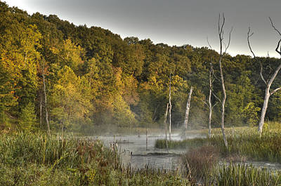 Photograph - Morning Mist by Ann Bridges