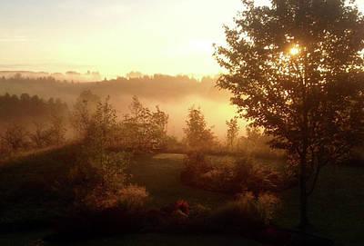 Photograph - Morning Mist by Cynthia Matthews