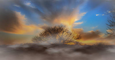 Morning Mist Art Print by James Wollard