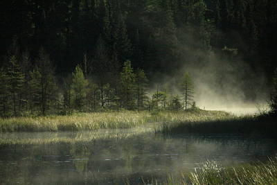 Minnesota Landscape Wall Art - Photograph - Morning Mist On The Gunflint Trail by Joi Electa