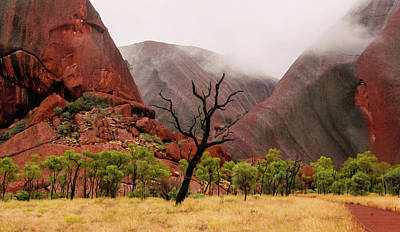 Photograph - Morning Mist Over Uluru - Central Australia by Lexa Harpell