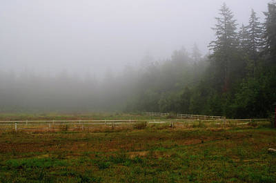 Photograph - Morning Mist Solitude by Tikvah's Hope