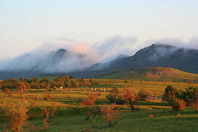 Photograph - Morning Mist, Wilpena Pound by Fran West
