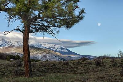 Photograph - Morning Moon by Denise Bush