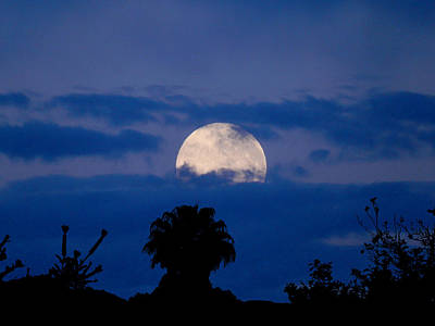 Photograph - Morning Moon by Mark Blauhoefer