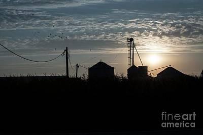 Photograph - Morning Of The Farm - 2 by David Bearden