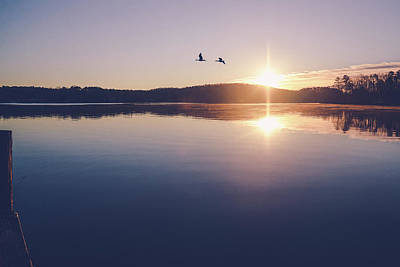 Photograph - Morning On Lake Harding by Tracie Moore