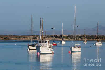 Morning On Morro Bay B3984 Art Print