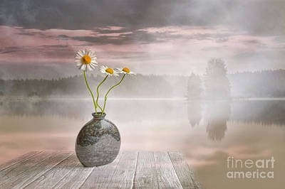 Daisies Digital Art - Morning On The Beach by Veikko Suikkanen