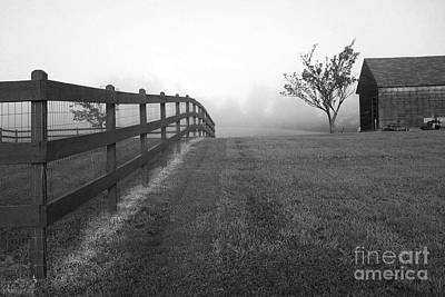 Photograph - Morning On The Farm        Bw by Linda Drown