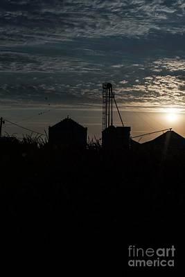 Photograph - Morning On The Farm - 3 by David Bearden