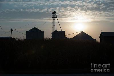 Photograph - Morning On The Farm by David Bearden