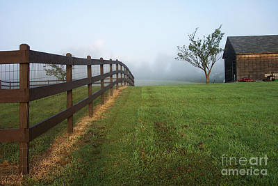 Photograph - Morning On The Farm by Linda Drown