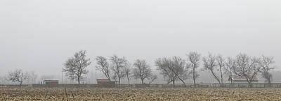 Photograph - Morning On The Farm by Steve Gravano