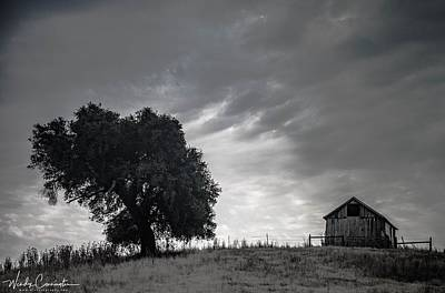 Photograph - Morning On The Hill B/w by Wendy Carrington