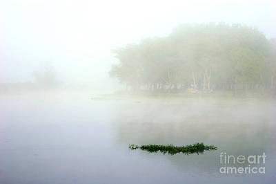 Photograph - Morning On The Parana by Balanced Art