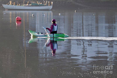 Photograph - Morning Paddle by Terri Waters
