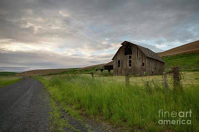 Photograph - Morning Palouse Road by Idaho Scenic Images Linda Lantzy