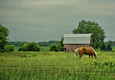 Photograph - Morning Pastures by Bonfire Photography