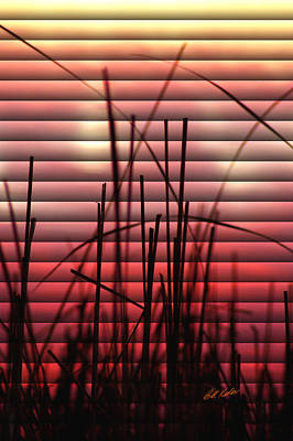 Photograph - Morning Reeds by Bill Kesler