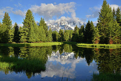 Photograph - Morning Reflection At Schwabacher Landing by Ray Mathis