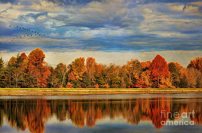 Morning Reflections Art Print by Darren Fisher