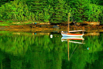 Photograph - Morning Reflections In Maine by Suzanne DeGeorge