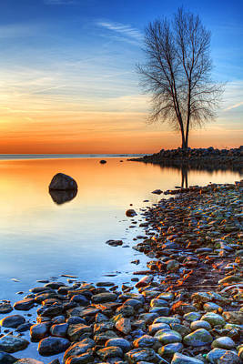 Metro Park Photograph - Morning Reflections  by James Marvin Phelps