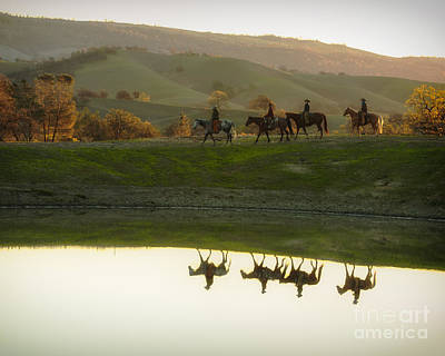Photograph - Morning Ride by Ana V Ramirez