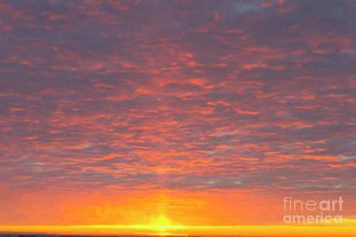Digital Art - Morning Ripples Pink Oil by Donna Munro