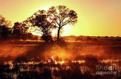 Photograph - Morning Rises, Namibia by Wibke W