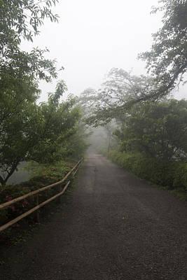 Photograph - Morning Road by Masami Iida