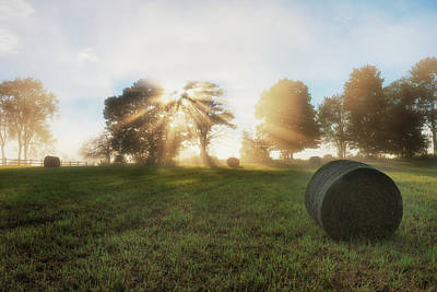 Photograph - Morning Rolls by Bill Wakeley