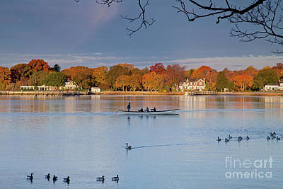 Photograph - Morning Row by Butch Lombardi