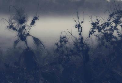Photograph - Morning Silence by Gloria Lynn Henry