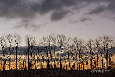 Photograph - Morning Sky by Nicki McManus