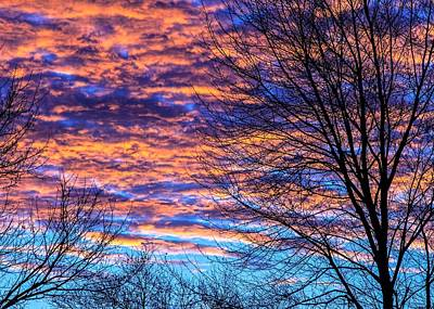 Photograph - Morning Sky by Ron Grafe