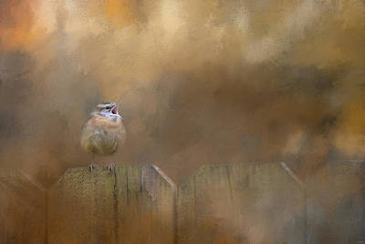 Mixed Media - Morning Song by Jai Johnson