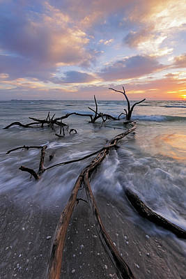 Photograph - Morning Stretch by Mike Lang