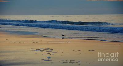Ocean Photograph - Morning Stroll by Megan Cohen