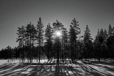 Photograph - Morning Sun Bw by Jouko Lehto