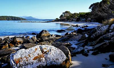 Photograph - Morning Sun - Fishers Point, Tasmania by Lexa Harpell