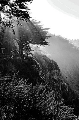 Photograph - Morning Sun Lite Bw by Gary Brandes