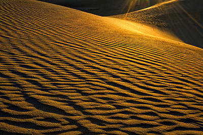 Photograph - Morning Sun On Sand Dunes - Death Valley by Stuart Litoff