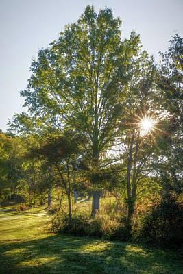 Photograph - Morning Sun by Tom Mc Nemar