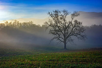 Morning Sunbeams In Cades Cove Print by Rick Berk